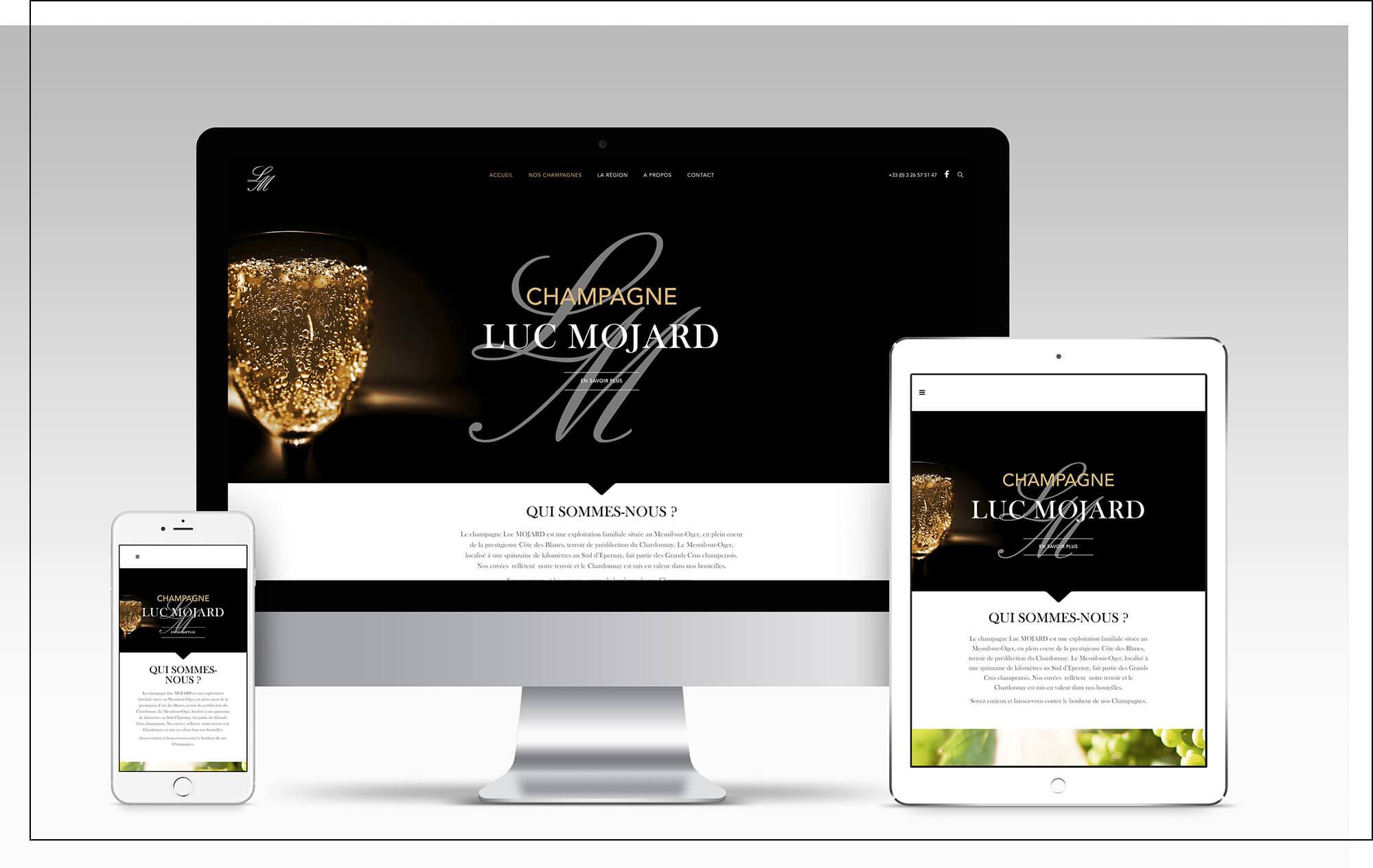 Champagne Luc Mojard 2